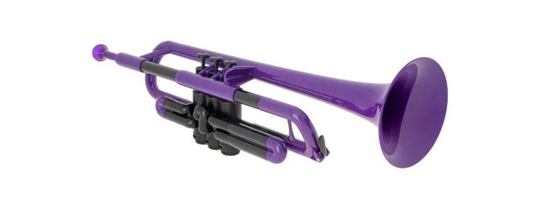 pTrumpet in Purple